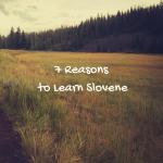 7 Reasons You Should Learn Slovene