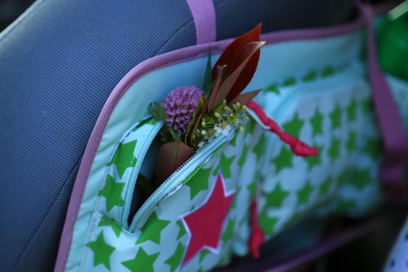 Lassig Car Seat Organizer