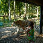 10 Tips for Making the Most out of Your Ljubljana Zoo Visit